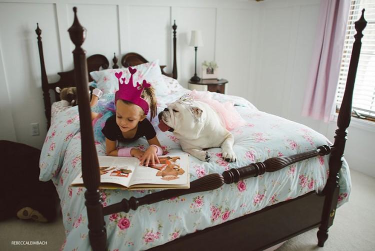 小女孩與英國鬥牛犬的生活點滴 20