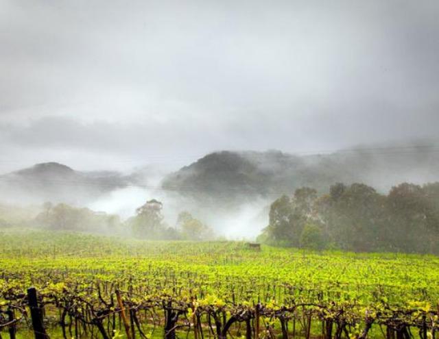 10 Best Wine Travel Destinations 2013 10