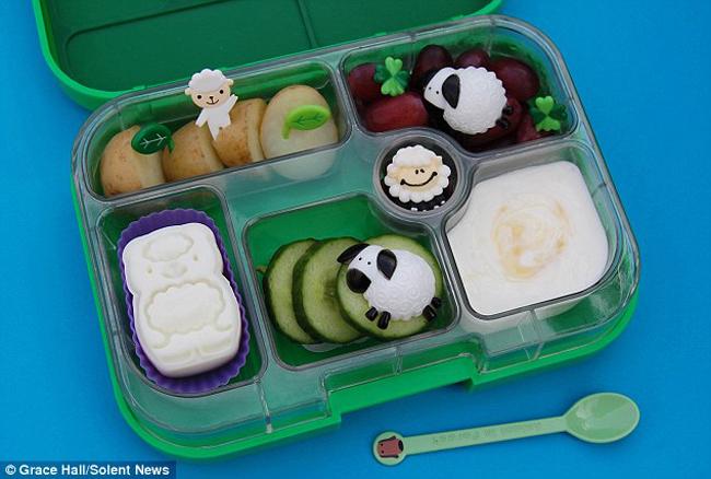 Eats Amazing lunchboxes 13