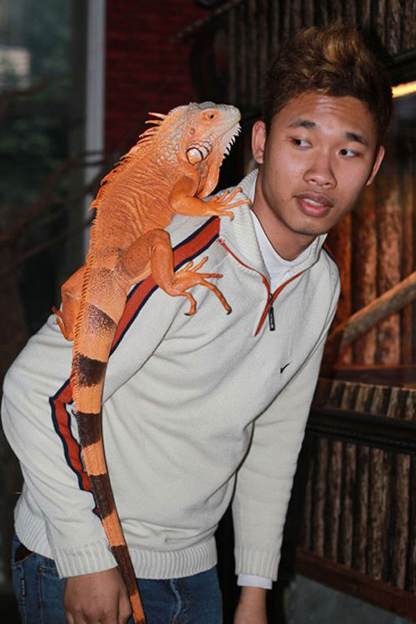 In Vietnam, A Pet Café That Houses Snakes, Iguanas & Other Exotic Creatures 8