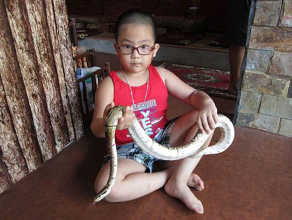 In Vietnam, A Pet Café That Houses Snakes, Iguanas & Other Exotic Creatures 9
