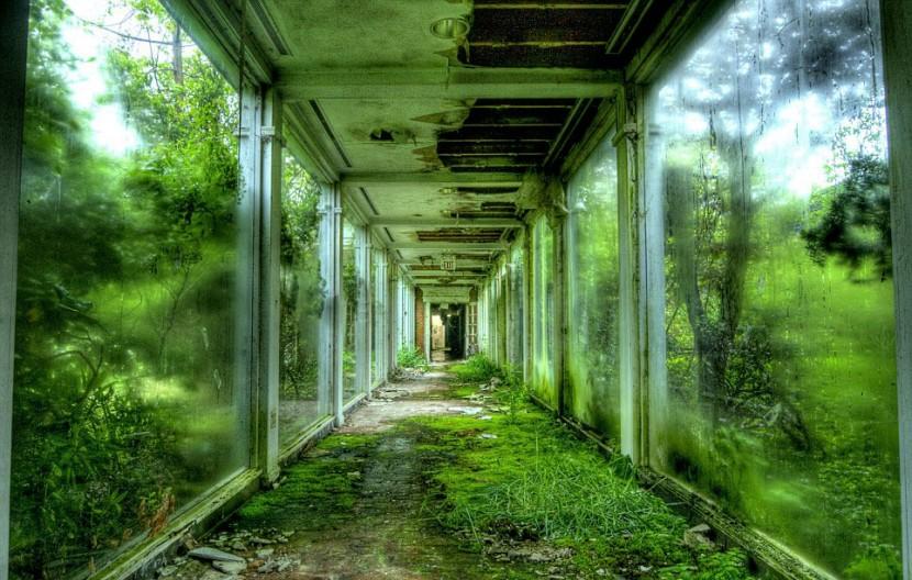 Photographer Jonny Joo captures eerie images of abandoned buildings 17