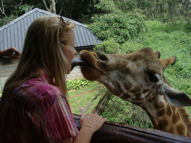愛上長頸鹿的22個理由 19