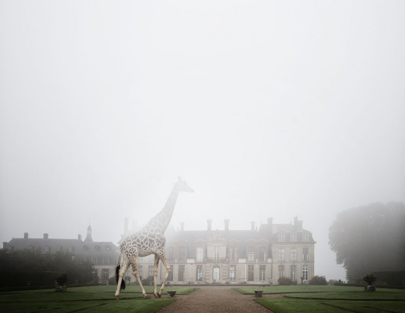 One Photographer's Playful Journey Through 25 Historic Sites in France 11