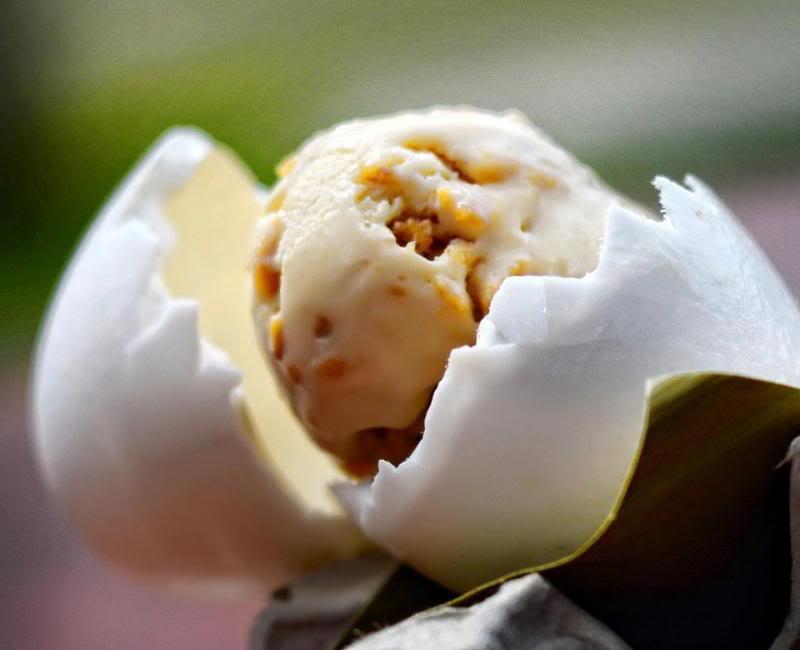 Would You Eat Crocodile Egg Ice Cream?  3