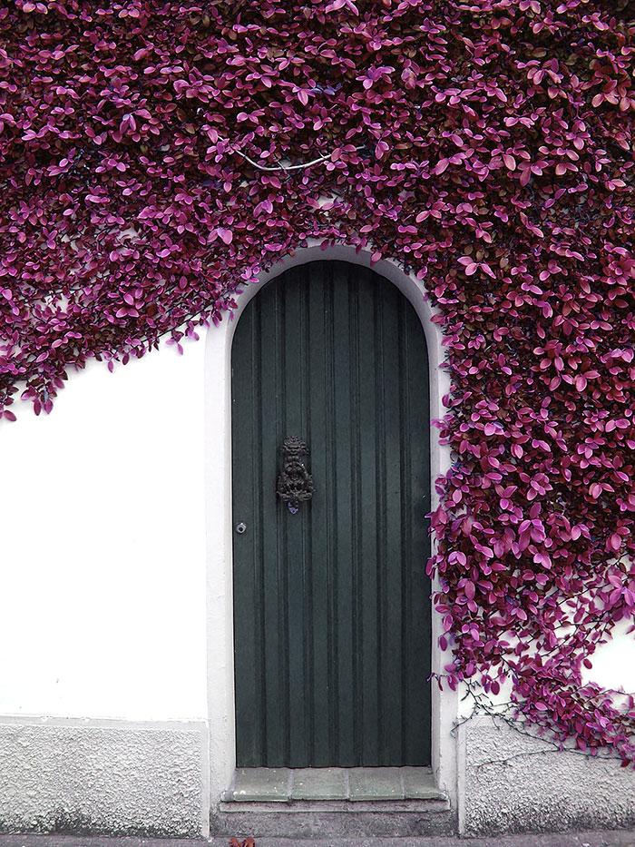 30扇令人歎為觀止的門,帶你通往奇幻世界 11