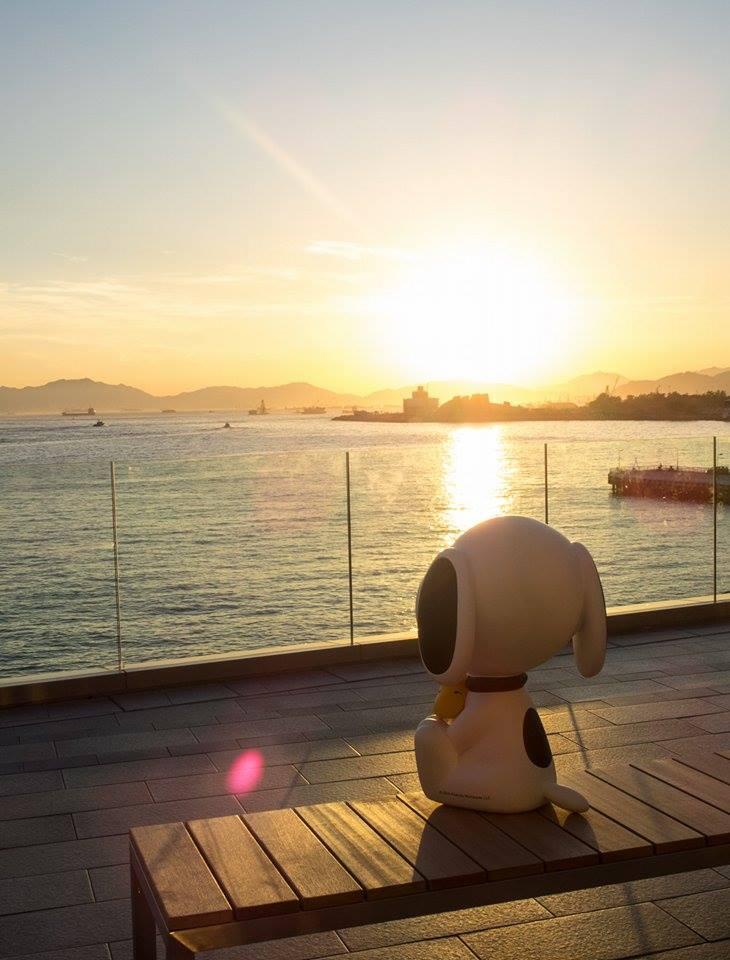 「夢想起航」史諾比藝術及生活展覽@海港城 4