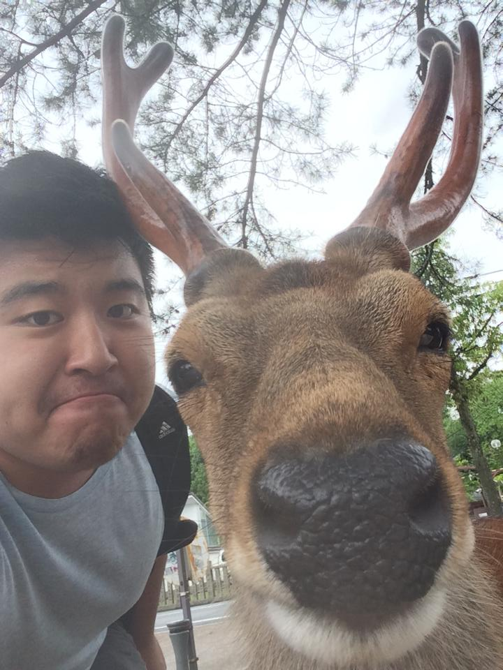 If a Deer Starts Licking Your Camera Lens, You're Probably a Little Too Close 4