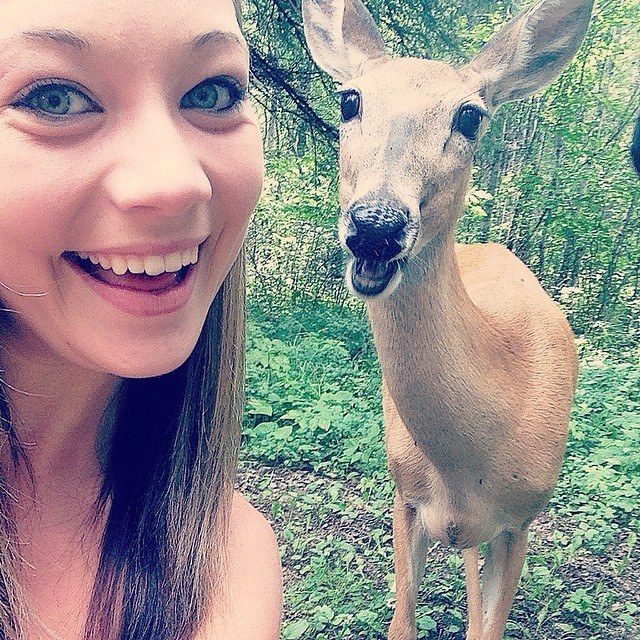 If a Deer Starts Licking Your Camera Lens, You're Probably a Little Too Close 7