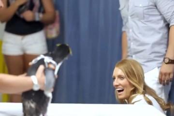 由於他們都非常喜歡企鵝,於是這位男生請來這小家伙當求婚嘉賓,送上鑽戒抱得美人歸