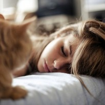 專家提醒:現代貓咪壓力大,因為主人把牠們當狗養