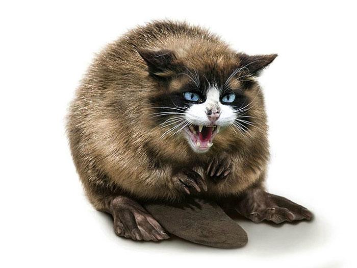 13 Ferocious Hybrid Animals to Creep You Out 5