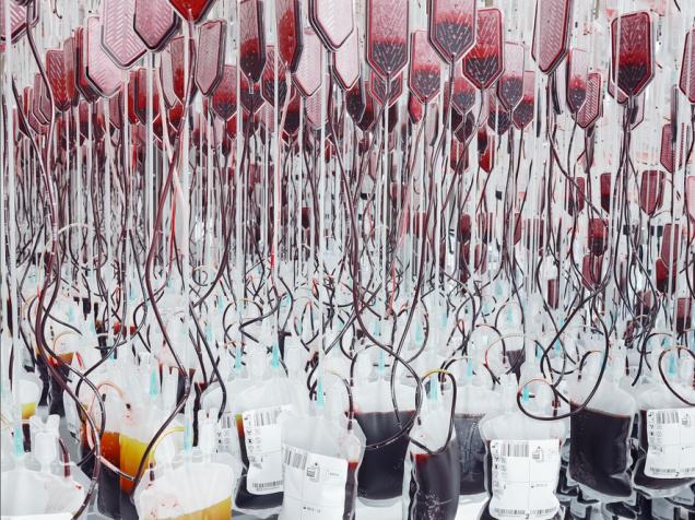 前進稀有血型實驗室 5