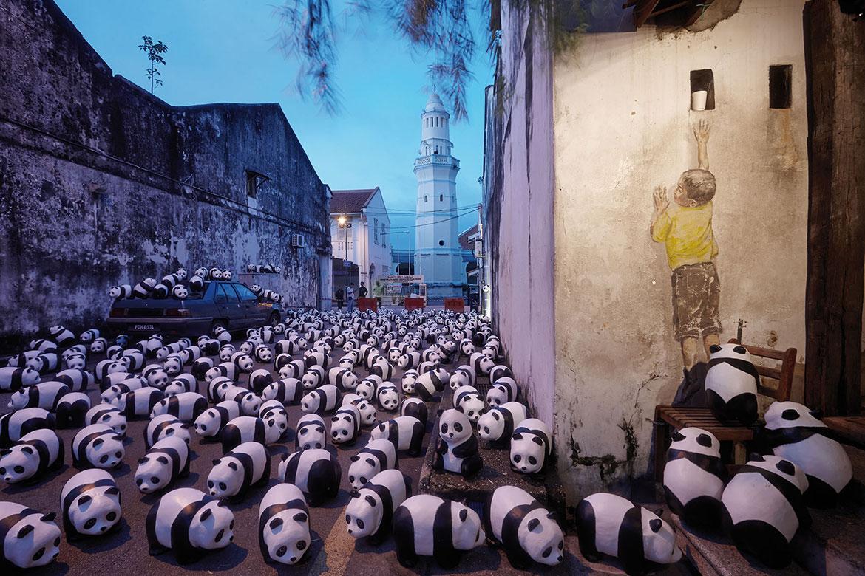1600熊貓環球保育行登陸大馬,快閃世界最古老熱帶雨林及大馬各地標 2