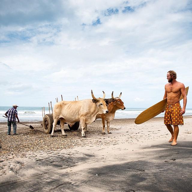 Travel Like A Pro :跟著15位Instagram旅遊達人學習探索世界之美 3