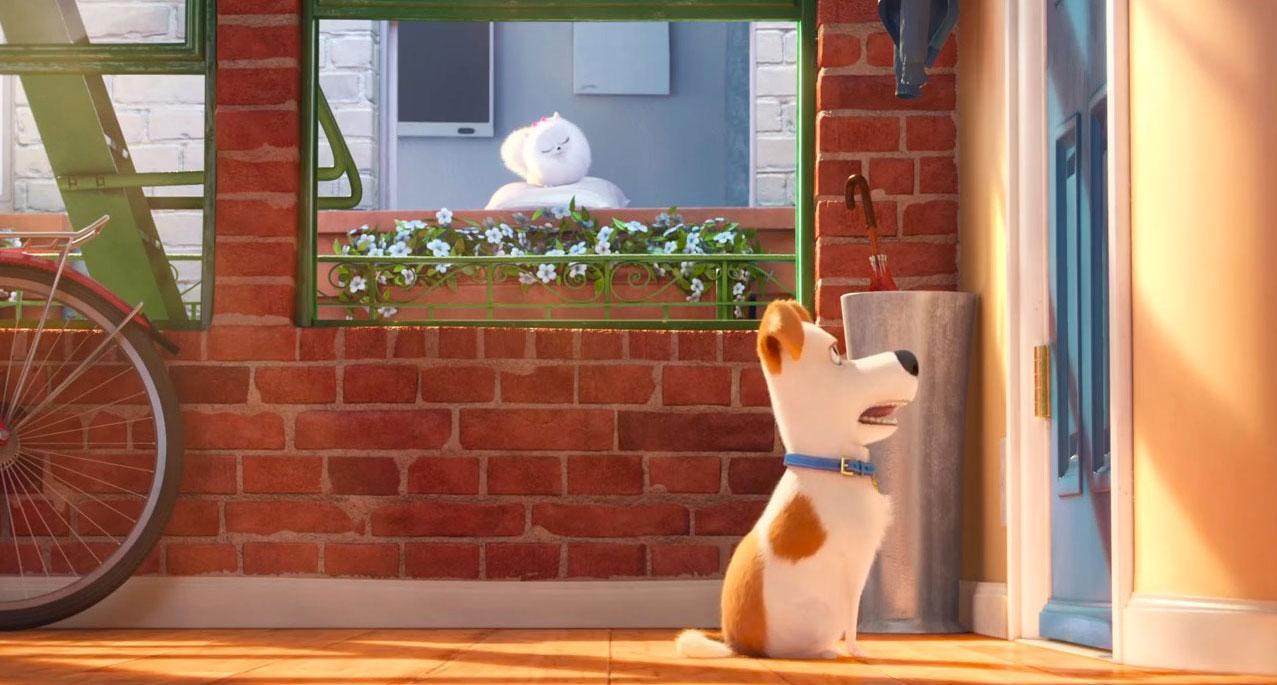 The Secret Life Of Pets - Official Teaser Trailer 8