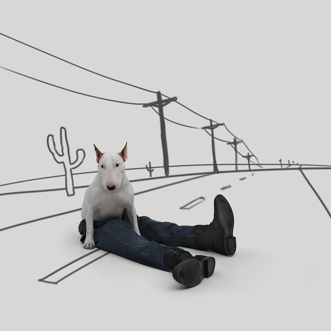 治愈離婚創傷的插畫攝影: 男人與狗的逗趣日常 4