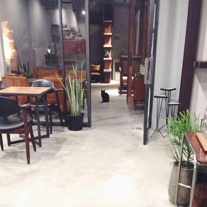 一個人也自在,巷弄裡的咖啡廳 15