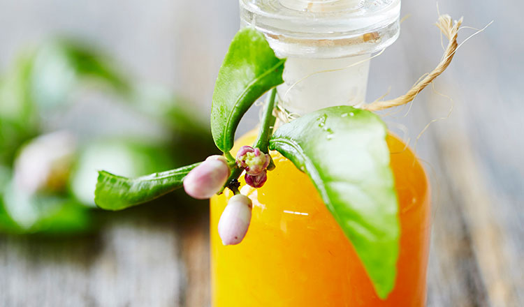 The Immunity-Boosting Tonic That You'll Need This Winter 2