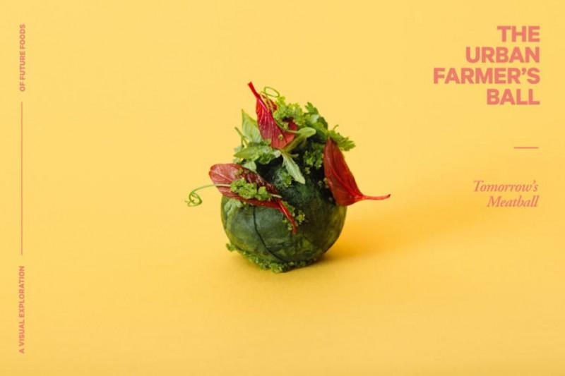 IKEA Lab:昆蟲?廚餘?瑞典傳統肉丸變身迎接未來 5