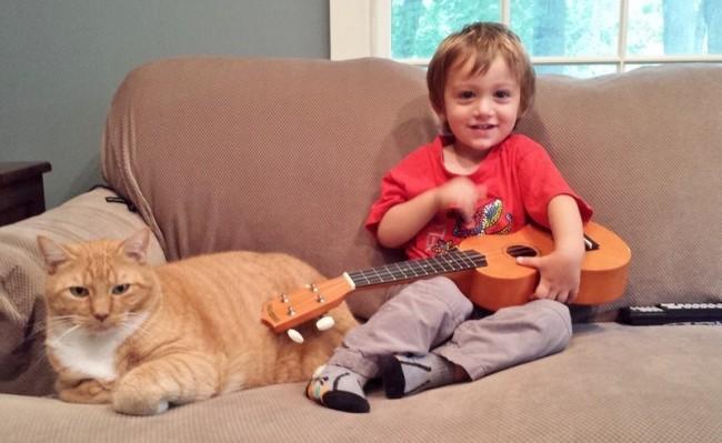 Love Together:被領養的流浪貓成為守護小男孩的感人片刻 5