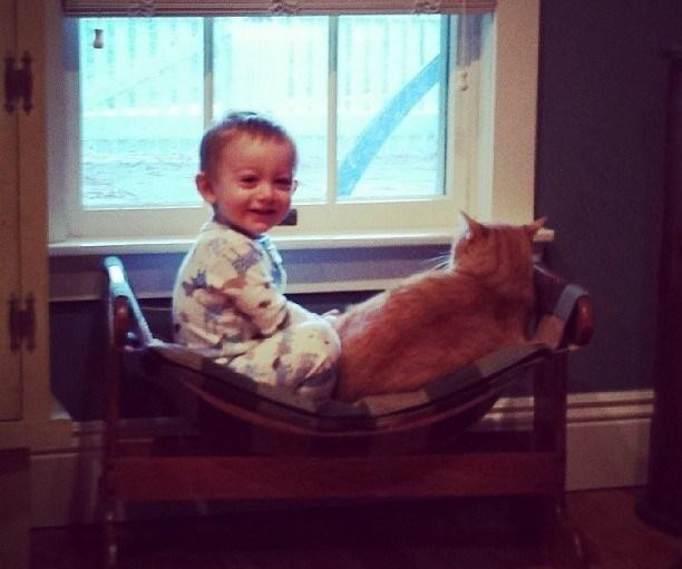 Love Together:被領養的流浪貓成為守護小男孩的感人片刻 7