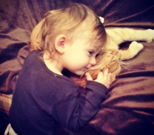 Love Together:被領養的流浪貓成為守護小男孩的感人片刻 9