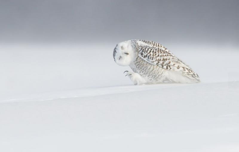 世界上還有許多美麗值得發現:National Geographic 評選 2015 年世界奇景 3