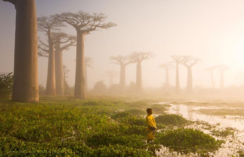 世界上還有許多美麗值得發現:National Geographic 評選 2015 年世界奇景 4