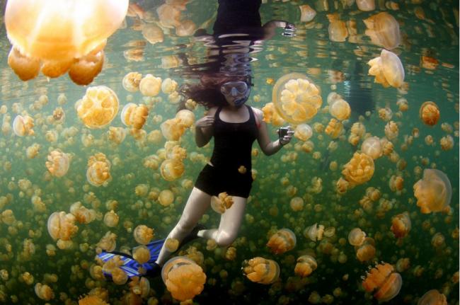 世界上還有許多美麗值得發現:National Geographic 評選 2015 年世界奇景 12