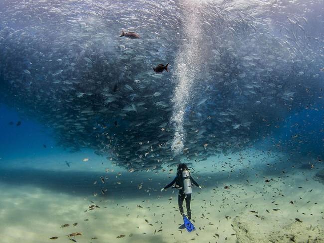 National Geographic 2015 年最棒的 20 張影像 4