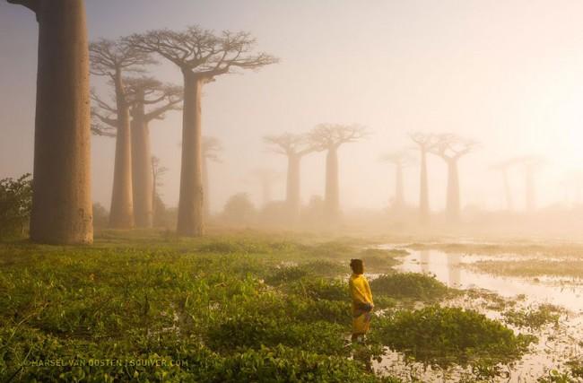 National Geographic 2015 年最棒的 20 張影像 12