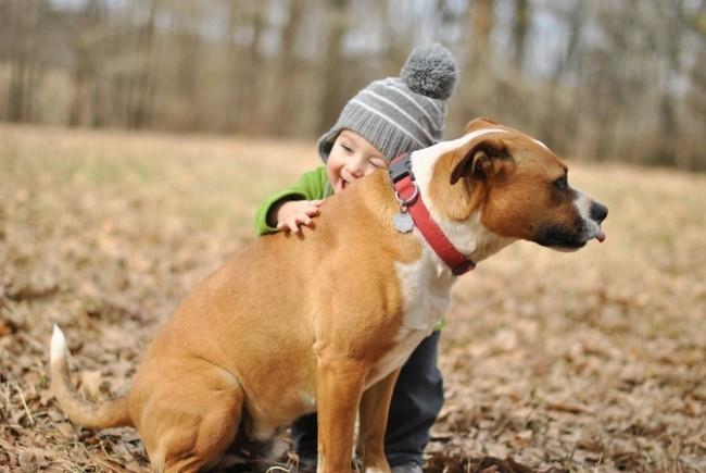 Say:「Yes!」讓小朋友養寵物吧~這是幫助成長的原因 3