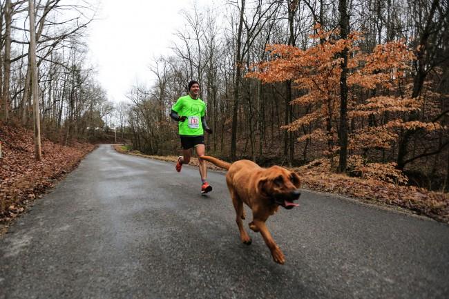 Keep Running:這是一隻來自美國的獵犬主動加入「馬拉松賽跑」的冒險故事! 5