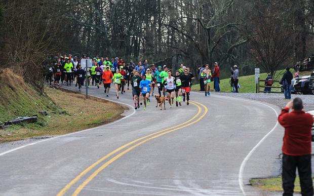 Keep Running:這是一隻來自美國的獵犬主動加入「馬拉松賽跑」的冒險故事! 6