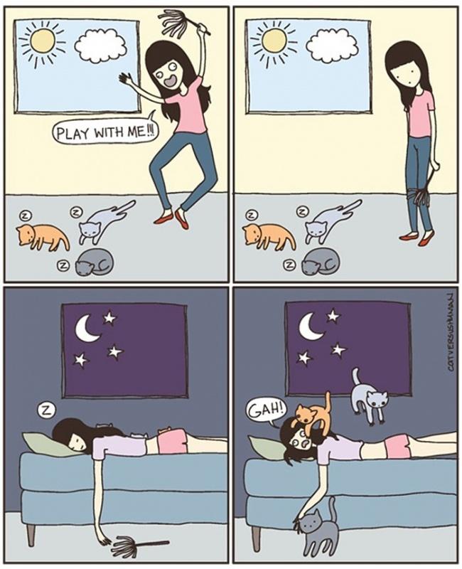 Cat Lovers:喵星人到底在想什麼?14 個養貓人會懂的貓咪的怪異個性 4