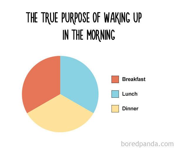 funny-food-charts 11