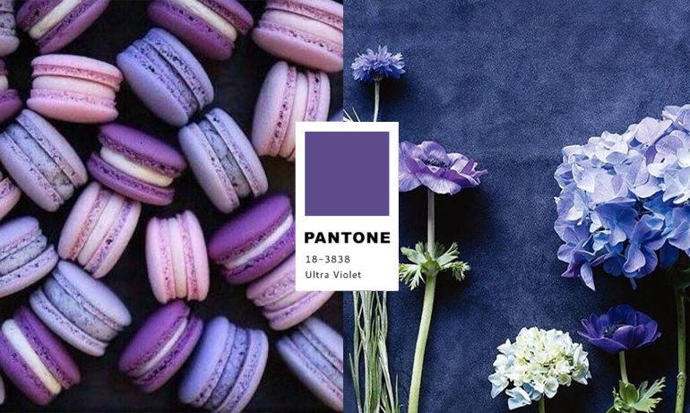 「Pantone年度顏色」的圖片搜尋結果